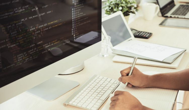 Professional ECommerce Website Development And Digital Marketing Services
